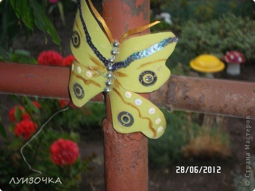 пчелки на винограднике фото 10