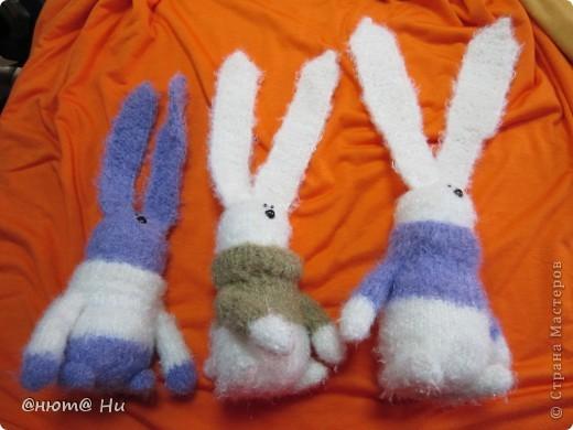 Вот и опять у меня навязались зайчишки. Вообще-то идея была навязать целую толпу зайцев и всей толпой их показать - так интереснее. НО! Опять это НО... В магазине, где я покупаю пряжу, продавцы поинтересовались, почему я покупаю понемногу и вся пряжа разных цветов. Пообещала им показать своих котов и зайцев. Сегодня сгребла этих троих архаровцев, даже не подумала сфотографировать, потому что отдавать не собиралась. В результате у меня их выпросили на витрину, так что фотосессию проводили прямо в магазине. фото 2