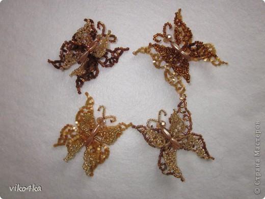 Бабочки и феи. фото 1