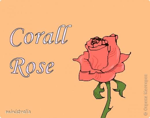 Нарисовала сегодня розу вот такую. Первая работа в компьютерной графике, строго не судите:) фото 1