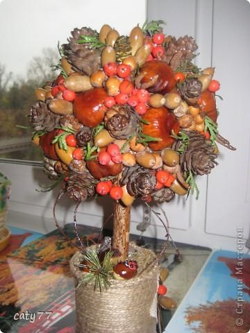 Осенние топиарий видео