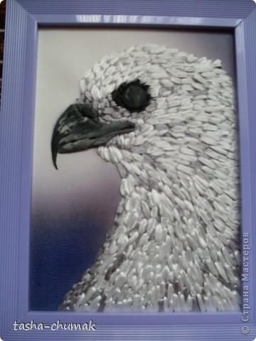 Птички найдены в интернете...  Вышивка лентами по принту. Глазки и клювики- пластика. фото 2