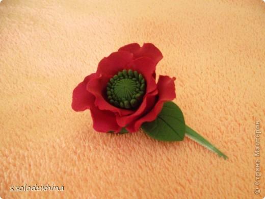 Всем привет!) Хочу вот вам показать мою вторую уже заколочку (мне определенно нравится их создание). Как известно цветущий мак является символом женского очарования, наверное, именно по этому именно этот цветок я выбрала когда делала украшение для моей сестренки). Изначально заколочка выглядела так... фото 1