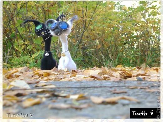 Как мы собрались на прогулку!)))) фото 3