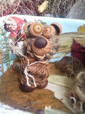 """Миша слушает, кто это говорит:""""Высоко сижу, далеко гляжу, не садись на пенек, не ешь пирожок!"""" фото 4"""