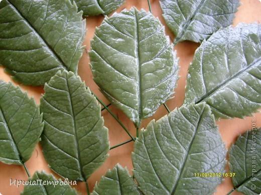 Листочки из самоварного Холодного Фарфора фото 5