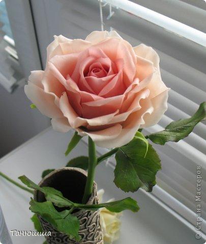 Девочки, привет! Вот заскочила с новыми работами. Роз будет много, леплю, и сроки ограничены, поэтому не совсем законченные изделия перед вашими глазами - есть недоделки в оформлении стеблей и их тонировке. Но, боюсь, потом просто не успею сфоткать. Розы разные, не для букета, будут дариться по одной. Жду вашего мнения и критики.  А....! И ваза, конечно. Пейп-арт осваивала. Сделала основу для вазы из трубы ПВХ (пластиковой, предназначенной для водопровода). Муж болгаркой отрезал нужный отрезок. Диаметр трубы 6 см. Малярным скотчем приклеила дно из плотного картона и вперёд, по алгоритму Татьяны Сорокиной. Розы из самоварного фарфора. фото 5