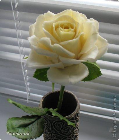 Девочки, привет! Вот заскочила с новыми работами. Роз будет много, леплю, и сроки ограничены, поэтому не совсем законченные изделия перед вашими глазами - есть недоделки в оформлении стеблей и их тонировке. Но, боюсь, потом просто не успею сфоткать. Розы разные, не для букета, будут дариться по одной. Жду вашего мнения и критики.  А....! И ваза, конечно. Пейп-арт осваивала. Сделала основу для вазы из трубы ПВХ (пластиковой, предназначенной для водопровода). Муж болгаркой отрезал нужный отрезок. Диаметр трубы 6 см. Малярным скотчем приклеила дно из плотного картона и вперёд, по алгоритму Татьяны Сорокиной. Розы из самоварного фарфора. фото 8