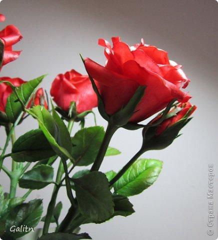 Всем, всем привет! Порадовать вас мне особо нечем, опять розы........... Заказали в подарок на день рождения, цвет и размер ( Высота 45см, бутоны, примерно, 9 см) пожелание заказчика.Вазу она хочет свою. так, что кувшинчик только для фотографии.( А мне он нравится) фото 4