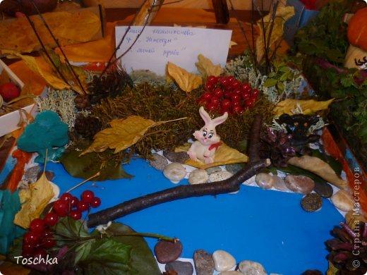 Осенняя выставка (дубль 2) фото 2