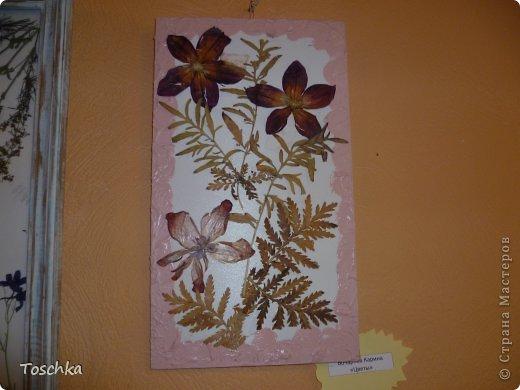 Осенняя выставка (дубль 2) фото 12