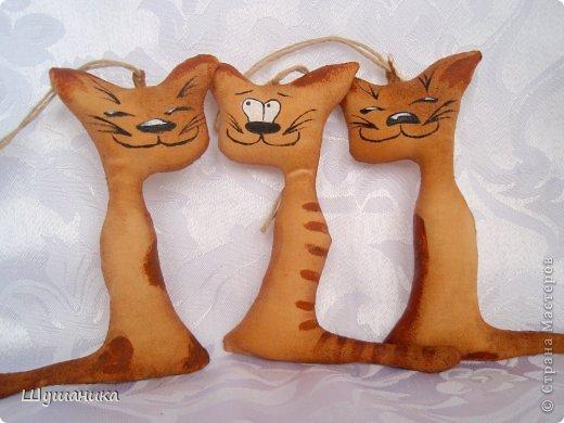 Это мои ароматные котики. Три товарища! Разделили рыбку на троих. фото 3