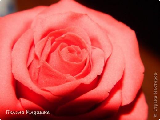 Моя вторая роза их холодного фарфора фото 2