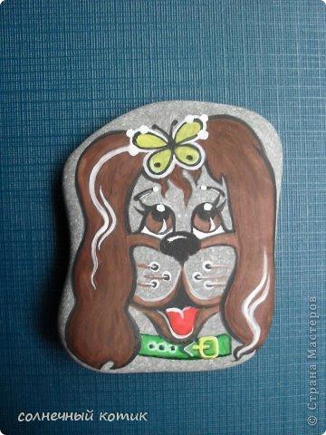 Насмотрелась в интернете разрисованных камней , решила и сама попробовать . Вот , что получилось. Кошачее семейство прям... фото 8