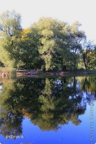Город Киев, 3 октября, + 25 градусов, солнечно, ну ооочень тепло!!!  Как же можно сидеть дома! Да еще и чудеса вокруг... Например, уже неделю цветет... да-да, каштан!  Осень с весною встретилась?!!! фото 20