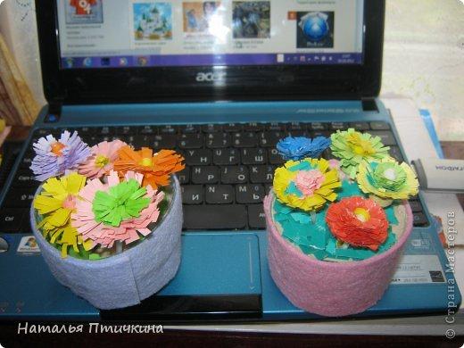 Любимые  мои цветочки фото 2