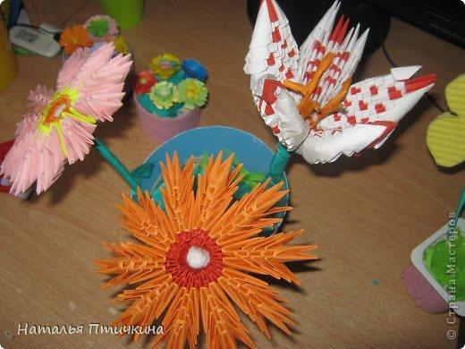 Любимые  мои цветочки фото 3