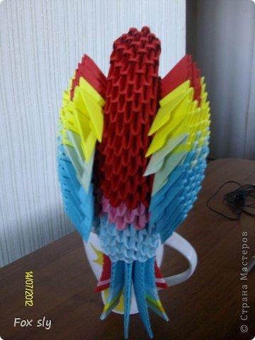 Попугай Какаду фото 3