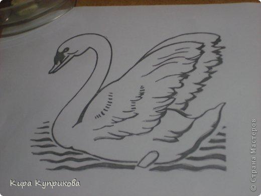 Вот он мой лебедь! фото 2