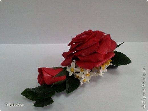 Бархатная роза фото 4