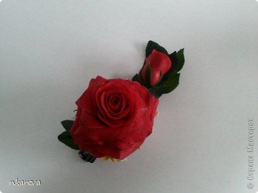 Бархатная роза фото 5