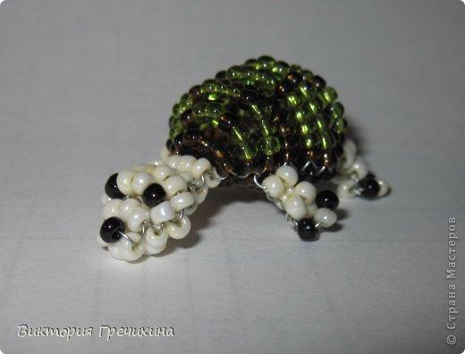 Сегодня сплелась еще одна моя маленькая зверушка параллельным плетением - черепашка!  Обращайтесь за схемой! фото 1