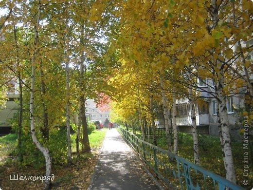 Нагулявшись по лесу, возвращаюсь в город. Здесь тоже очень красиво, хотя не всегда есть солнце. Поэтому фотографии уже не так светятся изнутри. фото 59