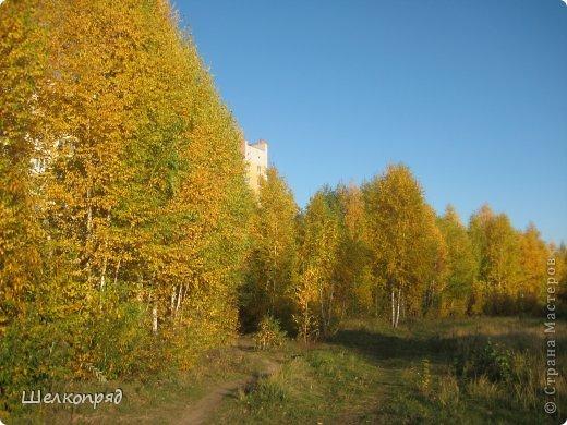 Нагулявшись по лесу, возвращаюсь в город. Здесь тоже очень красиво, хотя не всегда есть солнце. Поэтому фотографии уже не так светятся изнутри. фото 38