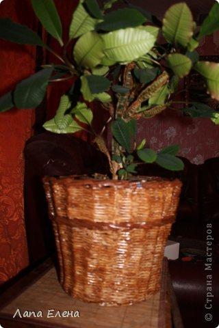 Кашпо для цветочка. фото 2