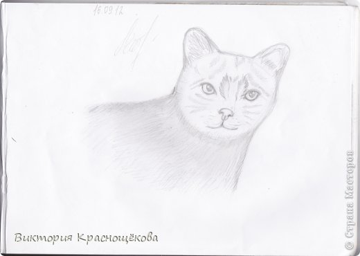 Опять рисунки:) фото 5