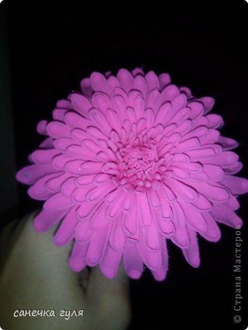 Вот такая хризантемка у меня получилась!Пока только цветок,без листьев. фото 2