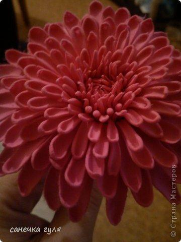 Вот такая хризантемка у меня получилась!Пока только цветок,без листьев. фото 1