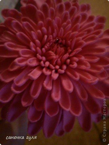 Вот такая хризантемка у меня получилась!Пока только цветок,без листьев. фото 4