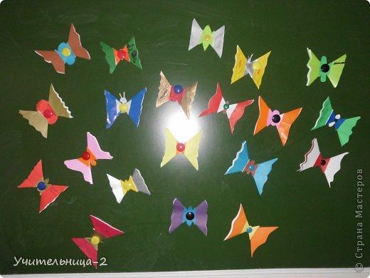 Тропические бабочки фото 1