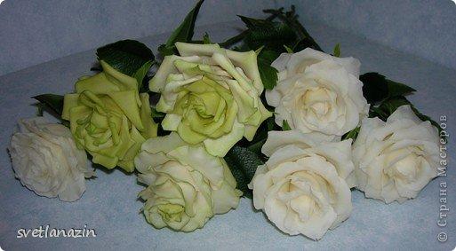 """Здравствуйте, жители СМ!!! Представляю Вашему вниманию """"выращенный"""" мною букет из 19 роз. Экспериментировала и с формой цветка, и с тонировкой. Белые розочки из неокрашенного ХФ (обнаружила, что из """"пищевого кукурузного крахмала"""", масса получается белой). фото 2"""