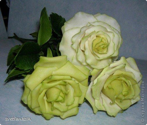 """Здравствуйте, жители СМ!!! Представляю Вашему вниманию """"выращенный"""" мною букет из 19 роз. Экспериментировала и с формой цветка, и с тонировкой. Белые розочки из неокрашенного ХФ (обнаружила, что из """"пищевого кукурузного крахмала"""", масса получается белой). фото 3"""