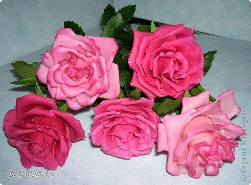 """Здравствуйте, жители СМ!!! Представляю Вашему вниманию """"выращенный"""" мною букет из 19 роз. Экспериментировала и с формой цветка, и с тонировкой. Белые розочки из неокрашенного ХФ (обнаружила, что из """"пищевого кукурузного крахмала"""", масса получается белой). фото 4"""