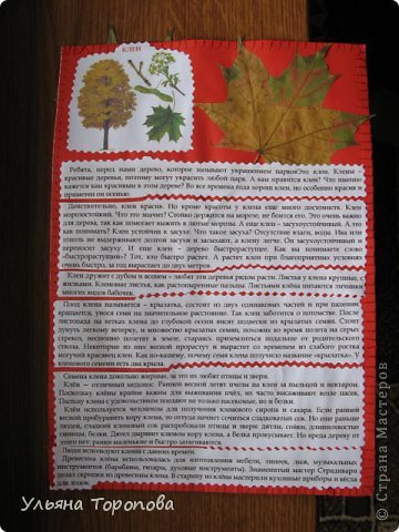 """Всем привет! Вот первые странички нашего альбома-гербария, выполненные в рамках проекта """"Каждому ребенку - гербарий"""", организованному ЛЁКА ЛЁКИНА. Всем заинтересованным сюда http://stranamasterov.ru/node/427335?tid=903 фото 3"""