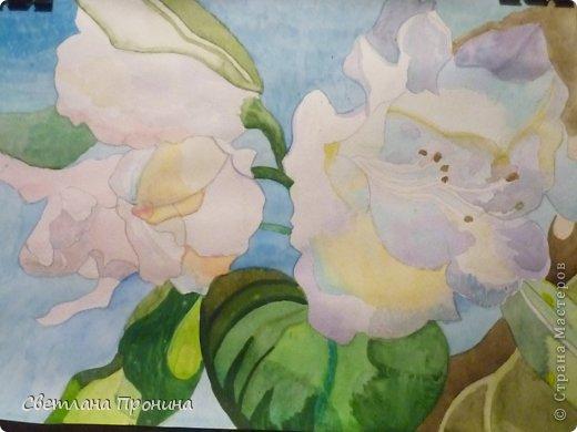 Только что дочка нарисовала цветы акварелью, не стала дожидаться пока куплю рамку, выкладываю её труд на показ. Мне очень понравилось. фото 1