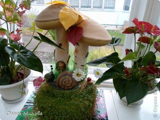 Мои грибочки на окошке в детском саду... фото 1