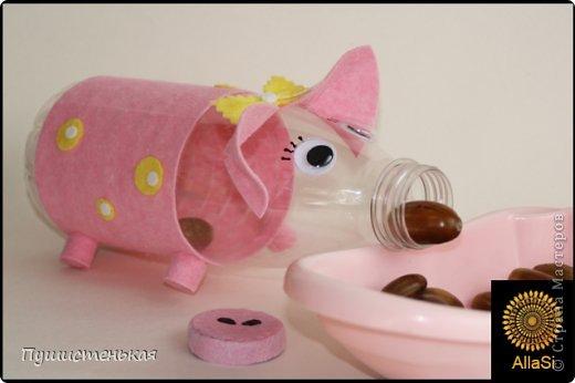 Развивающая игрушка для доченьки. Ей она очень понравилась. Подобрала подходящей формы бутылку и обклеила ее салфеткой для уборки, приклеила глазки. нарисовала реснички и ноздырьки ...вуаля, снюха готова!))) фото 2