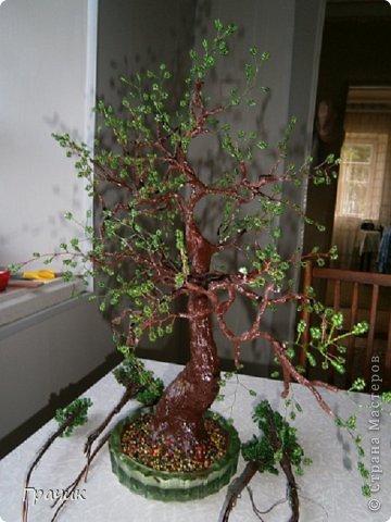 """""""Гостья из леса"""".Это первая работа с бисером. К сожалению, другой фотографии этого дерева нет, т.к. оно уже подарено.  фото 1"""