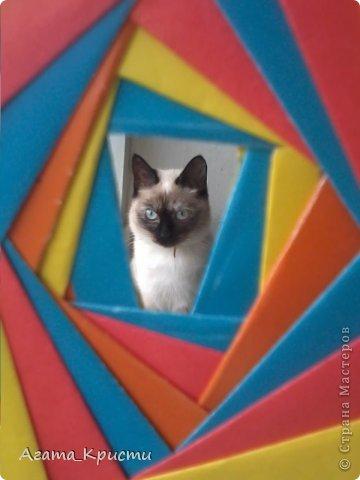 Мой котёнок, Дашенька, решила попозировать для Страны Мастеров!  фото 2