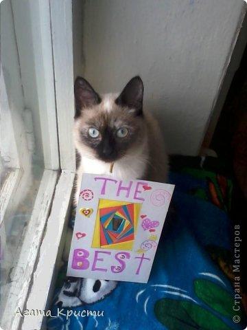 Мой котёнок, Дашенька, решила попозировать для Страны Мастеров!  фото 1
