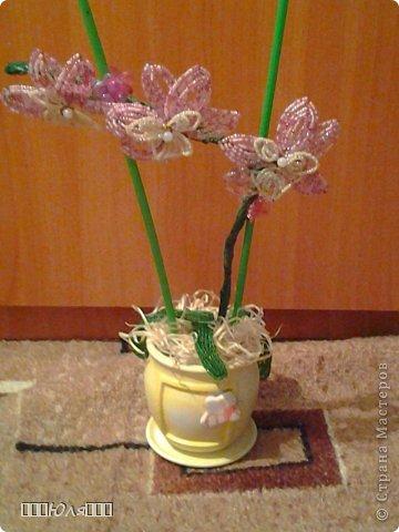 Вот такую орхидею я сделала на День Рождения своей любимой мамочки. фото 1