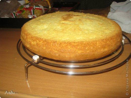 Здравствуйте дорогие жительницы Страны мастеров! Я хочу поделится с вами рецептом нежного тортика. Его можно готовить на праздники и в обычные дни.  Приятного просмотра!  фото 8