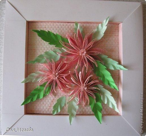 Идея не новая и не моя. Хризантем таких много. Но уж очень они красивы, пройти мимо не могла. фото 2