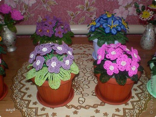 Очень люблю фиалки !!! Живые то же стоят на окне . Но эти всегда цветут и радуют глаз !!! фото 3