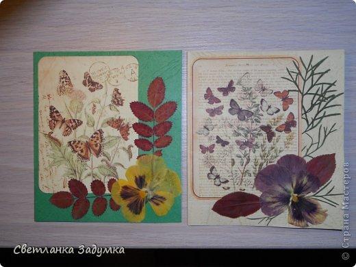 """Насмотрелась я на серии прекрасных открыточек у мастериц, и самой захотелось создать что-нибудь этакое. Лежал у меня лист бумаги красивый, с бабочками, любовалась да любовалась, но куда его сделать придумать не могла так и лежал с июня))) и вот.. наконец-то """"родилась"""" моя серия))) назвала ее """"Прощание с летом"""" Использовала сухие листья и цветы  Единственный минус - клеила листья на ПВА и после этого открытки чуть потряли форму, стали неровными, может клея много брала, или бумага тонковата... не знаю... в общем буду признательна если подскажете как устранить такой недостаток  Приятного просмотра)) фото 1"""