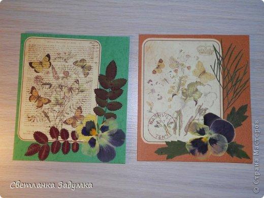 """Насмотрелась я на серии прекрасных открыточек у мастериц, и самой захотелось создать что-нибудь этакое. Лежал у меня лист бумаги красивый, с бабочками, любовалась да любовалась, но куда его сделать придумать не могла так и лежал с июня))) и вот.. наконец-то """"родилась"""" моя серия))) назвала ее """"Прощание с летом"""" Использовала сухие листья и цветы  Единственный минус - клеила листья на ПВА и после этого открытки чуть потряли форму, стали неровными, может клея много брала, или бумага тонковата... не знаю... в общем буду признательна если подскажете как устранить такой недостаток  Приятного просмотра)) фото 3"""